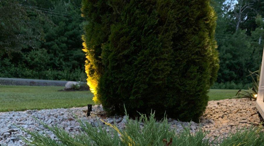 best lighting ideas for backyard
